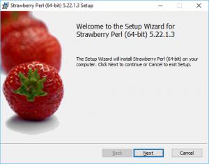 Strawberry Perl (64-bit) 5.22.1.3 Setup